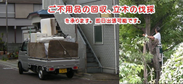 ご不用品・廃品回収 立ち木伐採